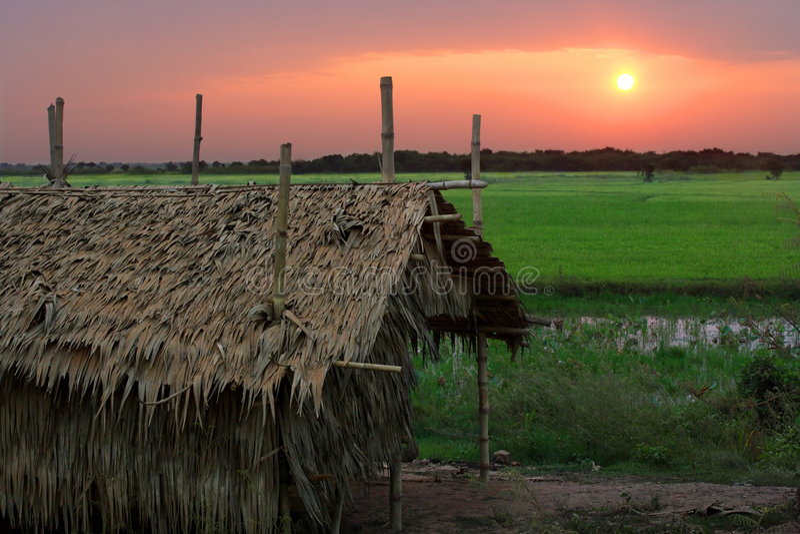 kambodjansk soluppgång royaltyfri bild