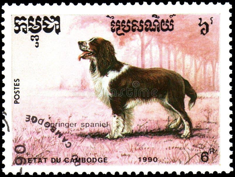 KAMBODSCHA - CIRCA 1990: die Briefmarke, gedruckt in Kambodscha, zeigt einen Springer-Spanielhund stockfotos