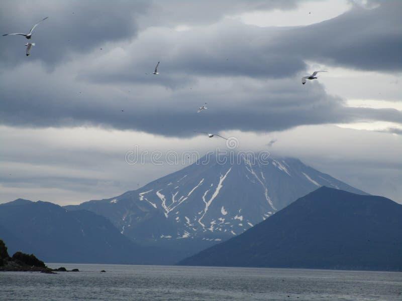 Kamchatka, Ρωσία στοκ φωτογραφία με δικαίωμα ελεύθερης χρήσης