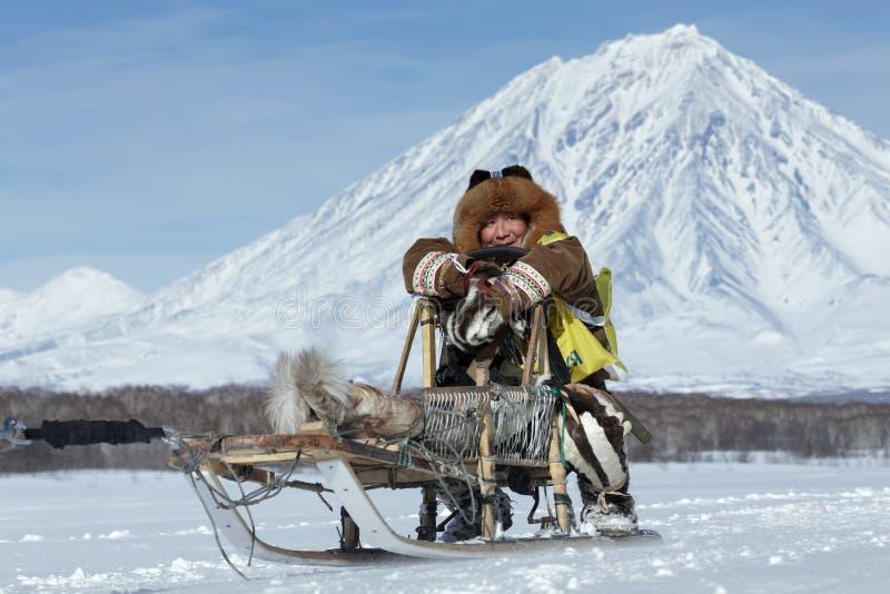 Kamchatka musher Mandyatov rzymianin Kamchatka sania Psi Ścigać się Beringia, Rosyjska filiżanka sania Psi Ścigać się śniegu dysc obraz stock