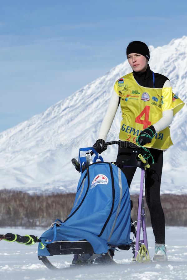 Kamchatka musher Yulya Chiruhina Kamchatka sania Psi Ścigać się Beringia, Rosyjska filiżanka sania Psi Ścigać się śniegu dyscypli zdjęcie royalty free