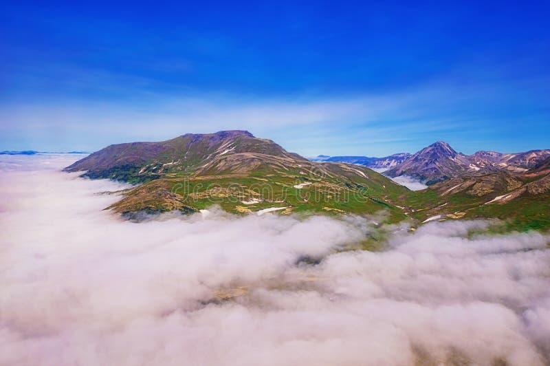 kamchatka trä för song för grouseförälskelsenatur wild Gräsplanfält och volcanoes Sikt från helikoptern royaltyfri foto