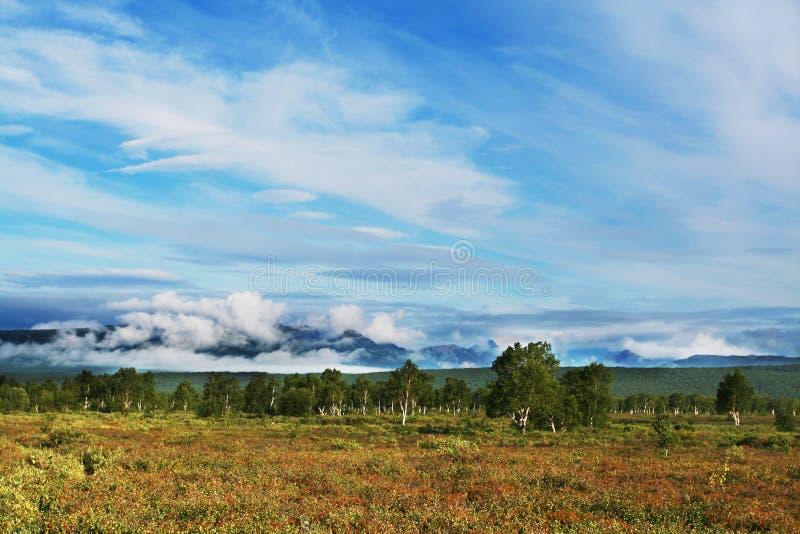 Download Kamchatkian landscapes stock photo. Image of active, landscapes - 4900688