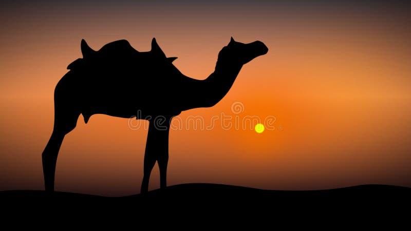 Kameel bij zonsondergangillustratie vector illustratie