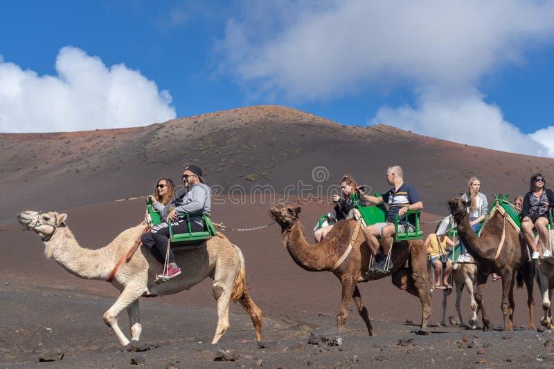 Kameel het berijden in het Nationale Park van Timanfaya, Lanzarote royalty-vrije stock foto's