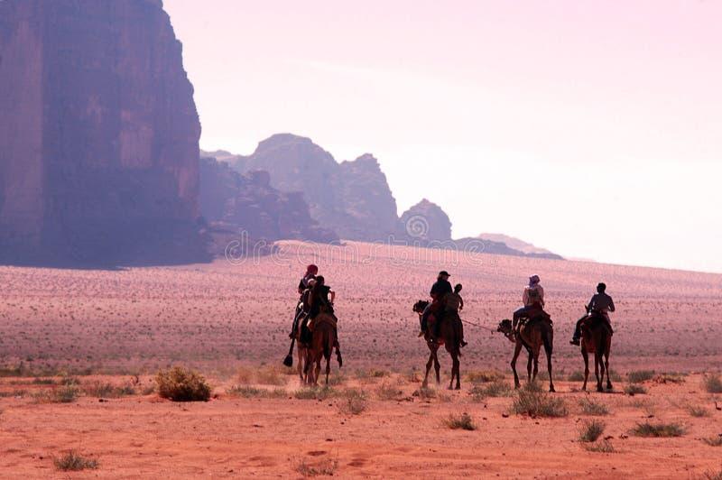 Kameel het berijden in Wadi Rum Jordan stock foto's