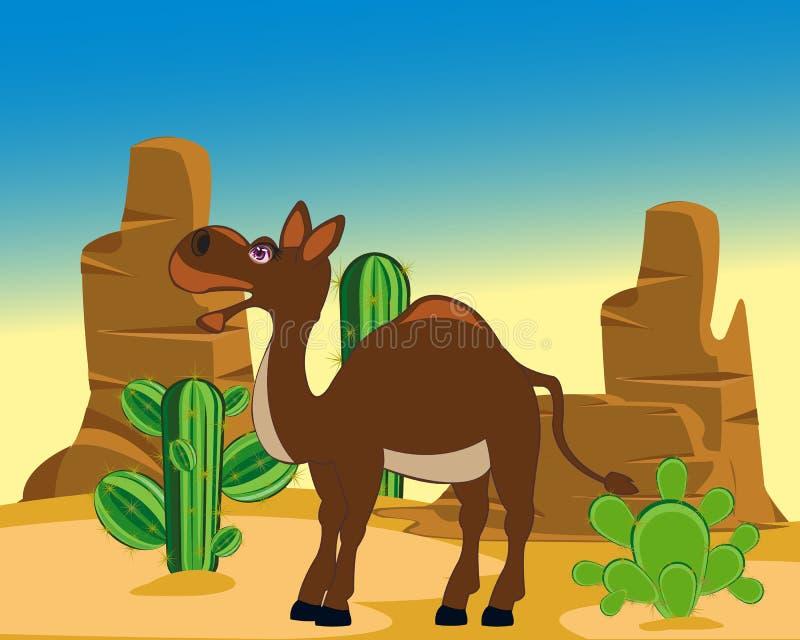 Kameel in woestijn royalty-vrije illustratie
