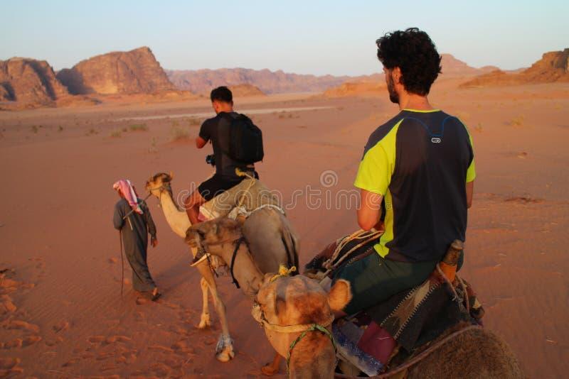 Kameelrit door berbergids wordt geleid in Wadi Rum, Jordanië dat stock afbeelding