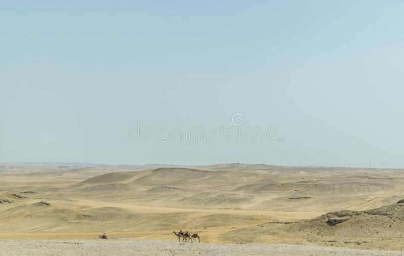 Kameelruiters in Sahara Desert stock foto's