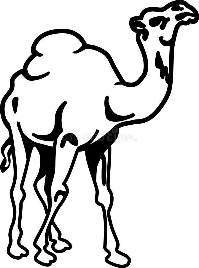 Kamel stock abbildung