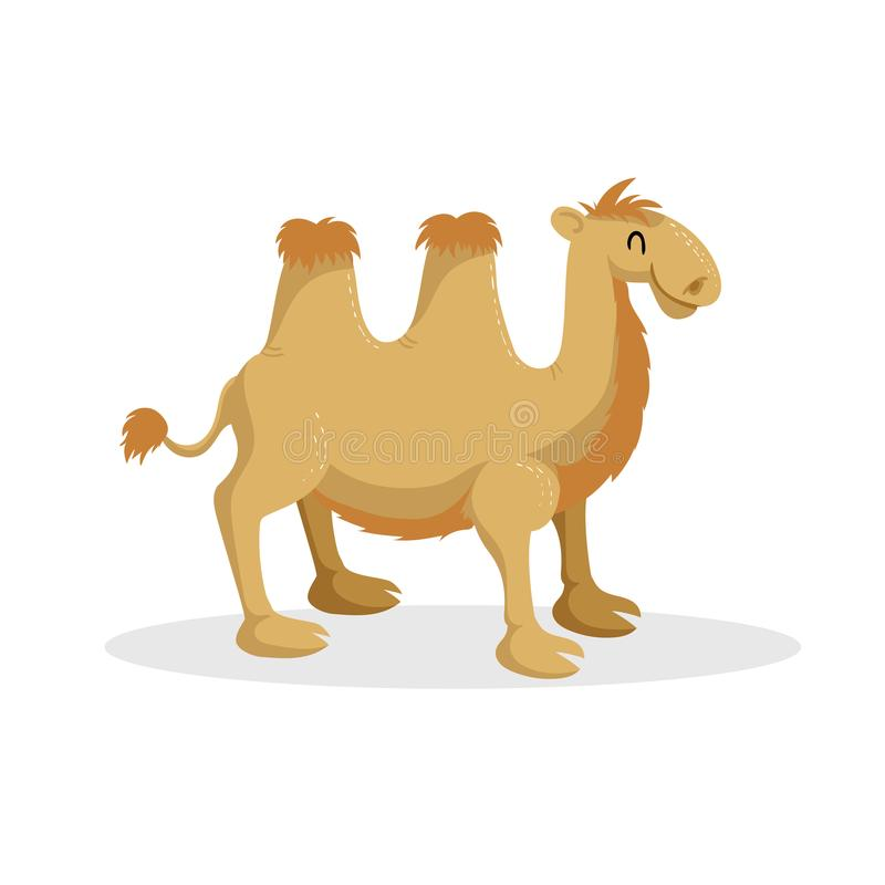 Kamel för moderiktig design för tecknad film bactrian Afrikanskt ökendjur Djurliv- och zoovektorillustration royaltyfri illustrationer