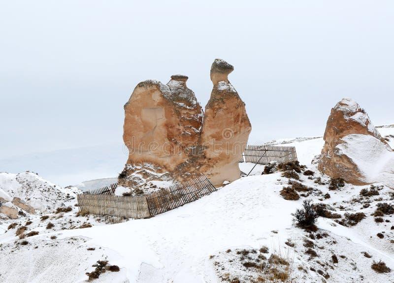 Kamel-Felsen in Urgup, Cappadocia lizenzfreies stockbild