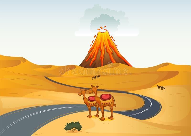 Kamel framme av en vulkan på öknen stock illustrationer