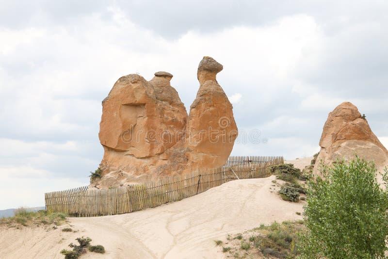 Kamel-geformte Felsformation in Devrent-Tal, Cappadocia lizenzfreies stockfoto
