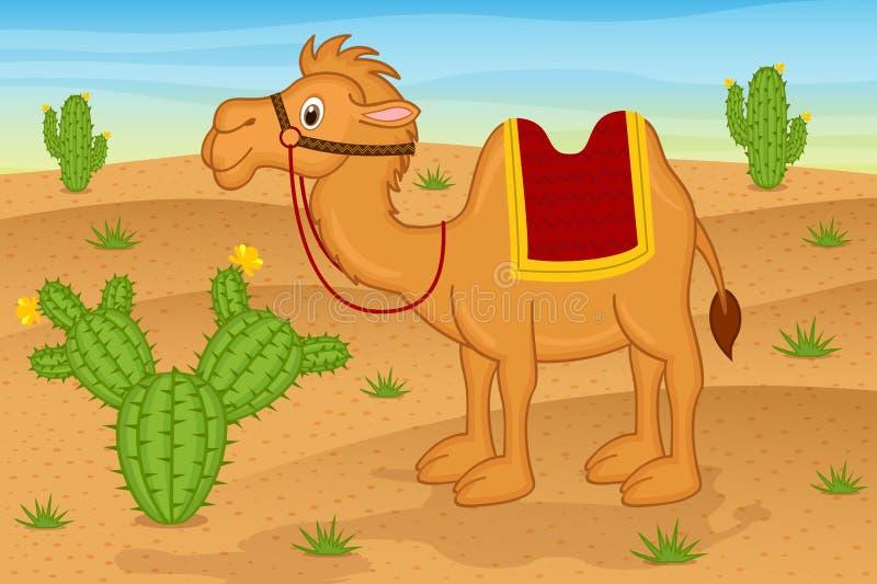Kamel i öken vektor illustrationer