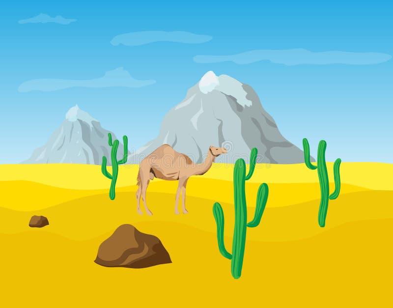 Kamel i öknen stock illustrationer