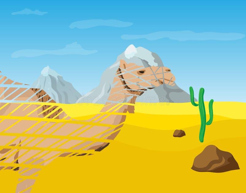 Kamel i öknen vektor illustrationer