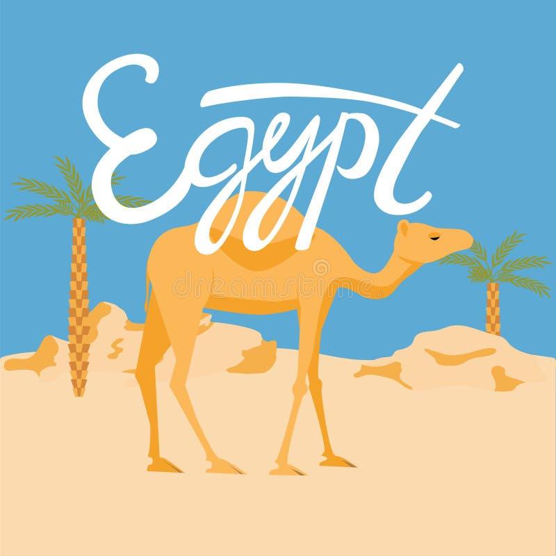 Kamel i en desery Egypten bokstäver royaltyfri illustrationer