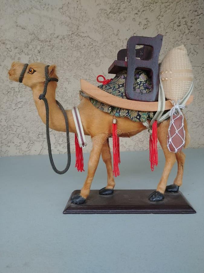 Kamel-Leben-Verzierung stockbilder