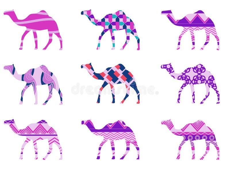 Kamel med en modell ställ in vektorn stock illustrationer