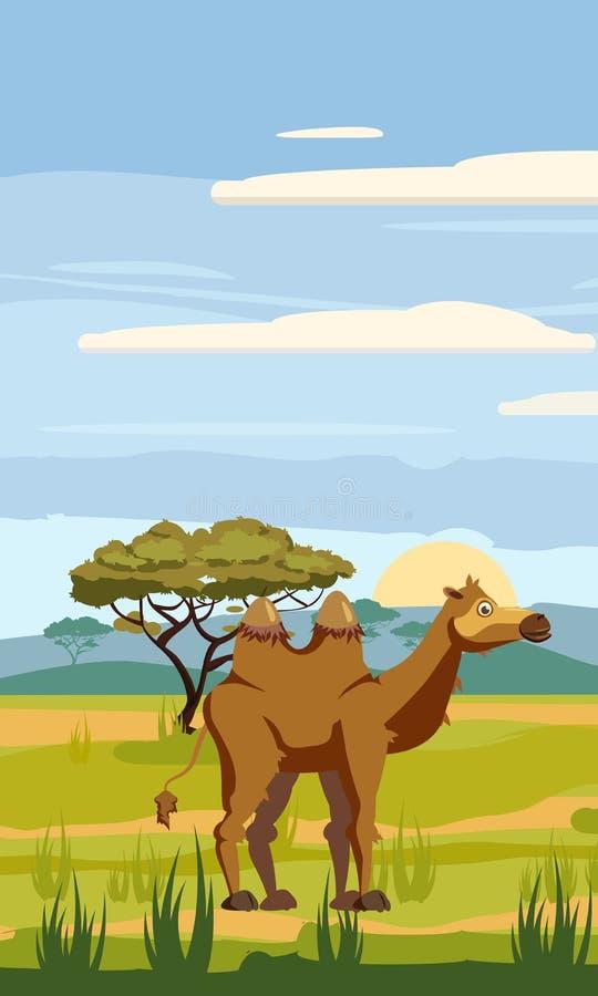 Kamel på bakgrunden av det afrikanska landskapet, savann, tecknad filmstil, vektorillustration royaltyfri illustrationer