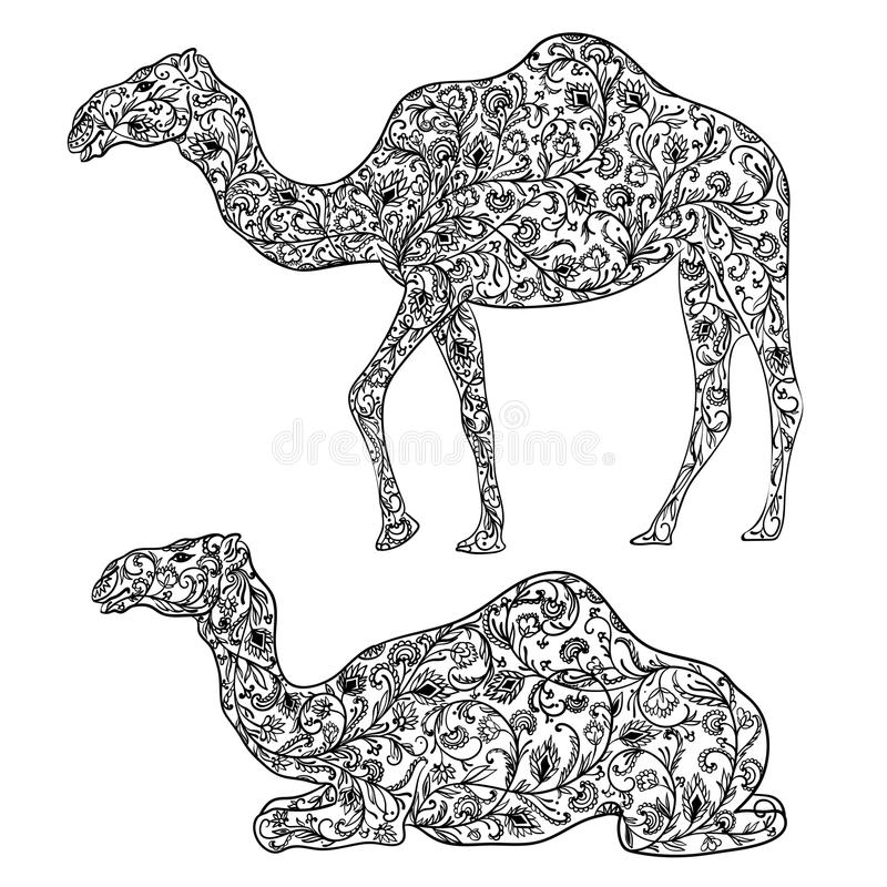 Kamel som dekoreras med den orientaliska prydnaden royaltyfri illustrationer