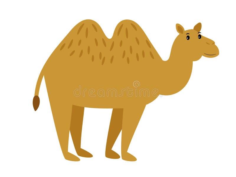 Kamel Tecken för kamel för tecknad filmvektorhusvagn på vit royaltyfri illustrationer