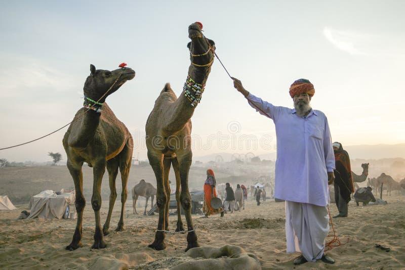 Kamel und Kamelhändler ein frühen Morgen stockbild