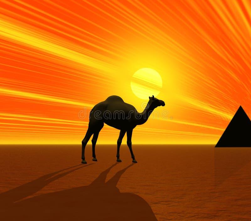 Kamel und Pyramide stock abbildung