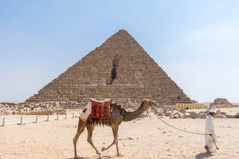Kamel und Reiter nahe der Pyramide von Menkaure stockfotos