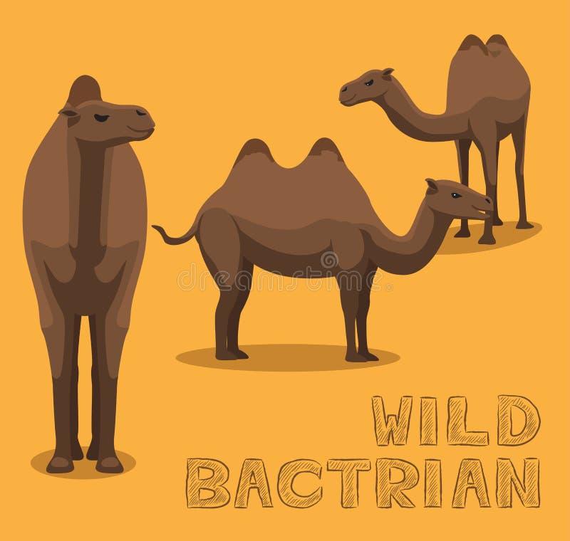 Kamel-wilde Bactrian Karikatur-Vektor-Illustration lizenzfreie abbildung