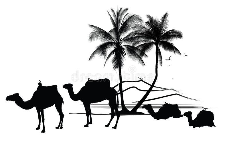 kamelen en palm vector illustratie