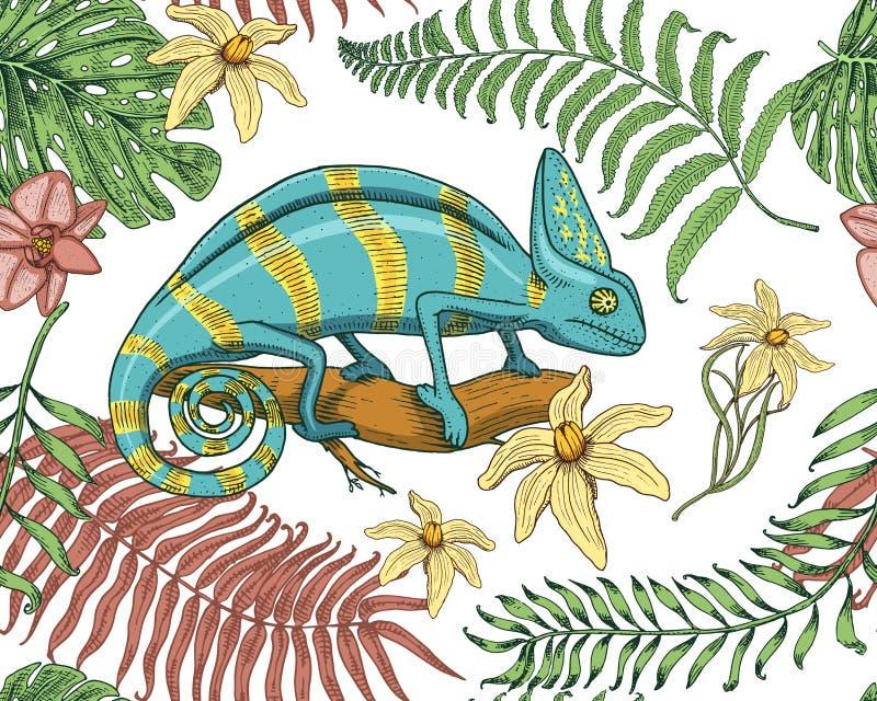 Kameleontödla, tropiska blommor, sömlös modell Reptil eller orm för amerikan som grön är växtätande också vektor för coreldrawill vektor illustrationer