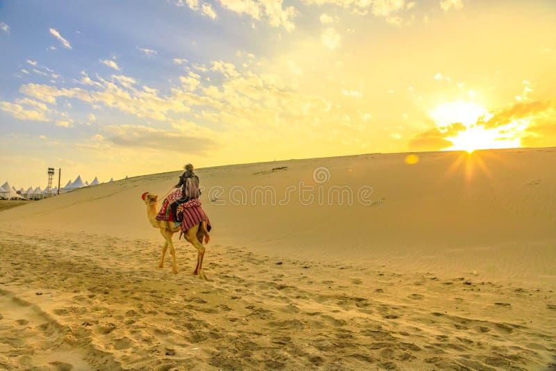 Kamelfahrt in der Wüstensafari lizenzfreies stockbild