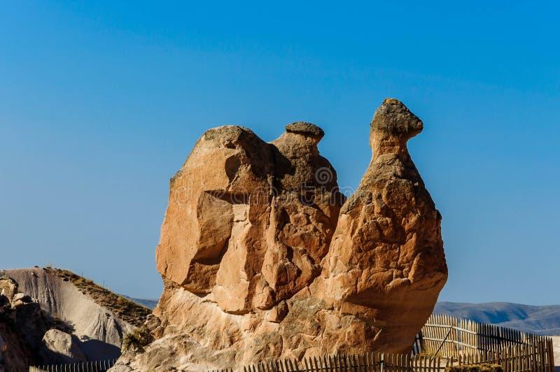 Kamelfelsen an der Fantasie oder an Devrent-Tal, Cappadocia - Goreme - die Türkei lizenzfreies stockfoto