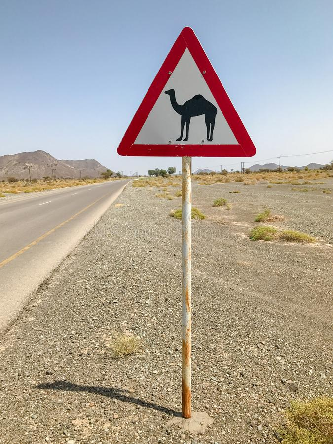 Kamelquerzeichen auf Wüstenstraße stockfotos