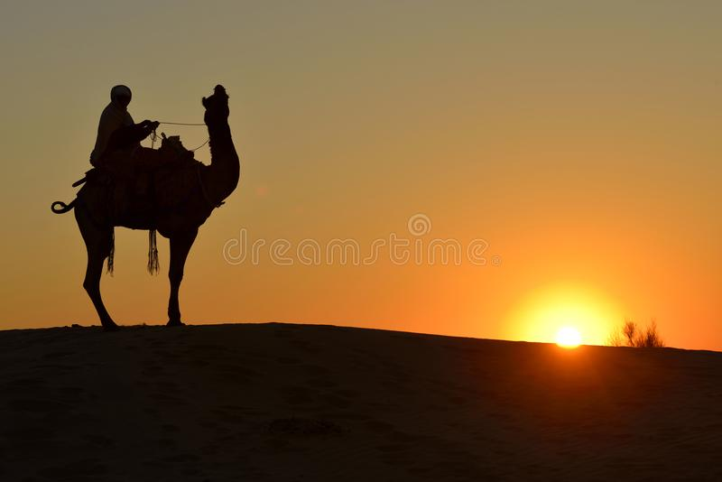 Kamelryttare och kamel i Jaisalmer, Indien fotografering för bildbyråer