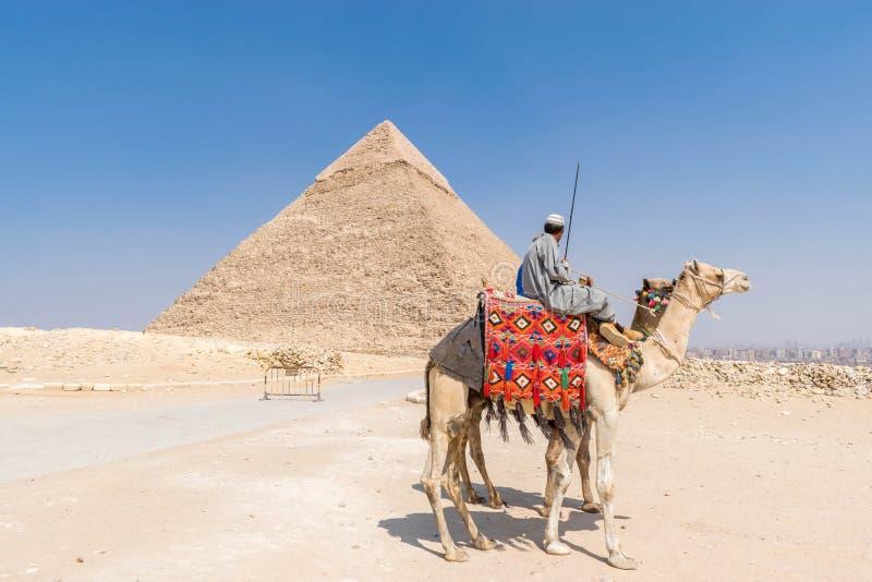 Kamelryttare och pyramid av Khafre fotografering för bildbyråer