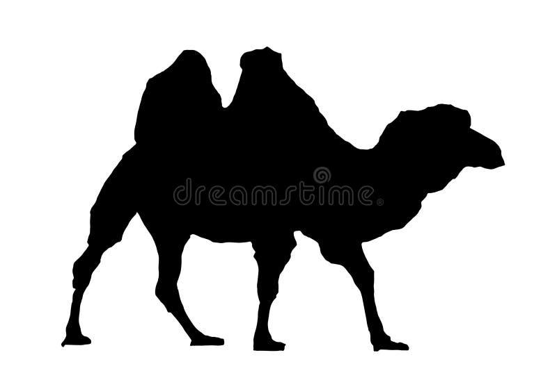 kamelsilhouette vektor illustrationer