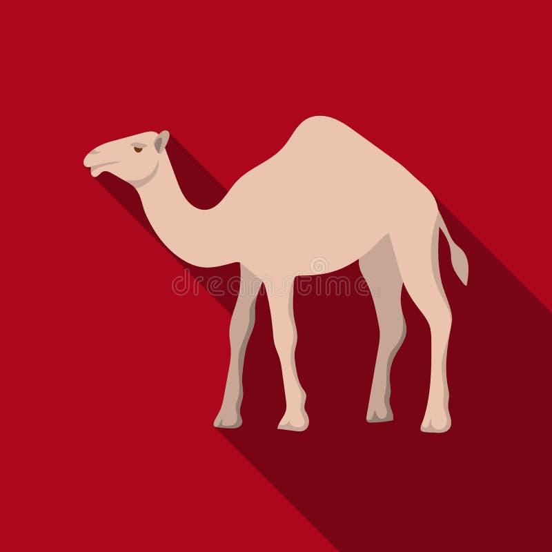 Kamelsymbol i plan stil som isoleras på vit bakgrund Arabisk illustration för vektor för emiratsymbolmateriel royaltyfri illustrationer