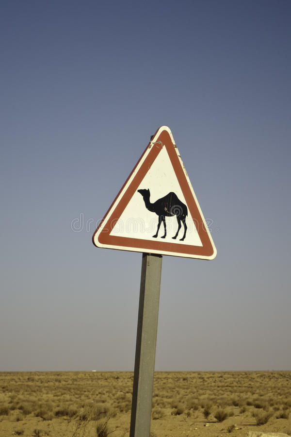 kamelteckenvarning arkivbild