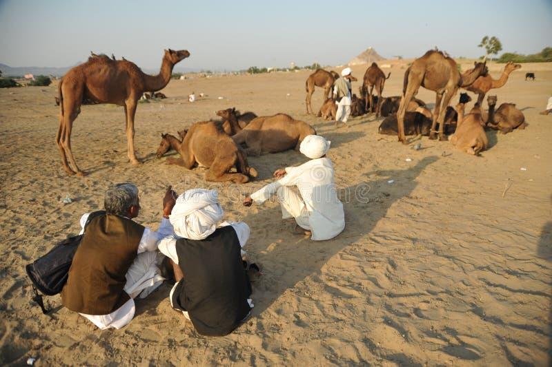 Kamelverkäufer lizenzfreie stockfotos
