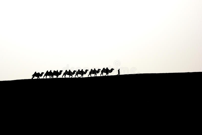 Kamelwohnwagen lizenzfreies stockbild