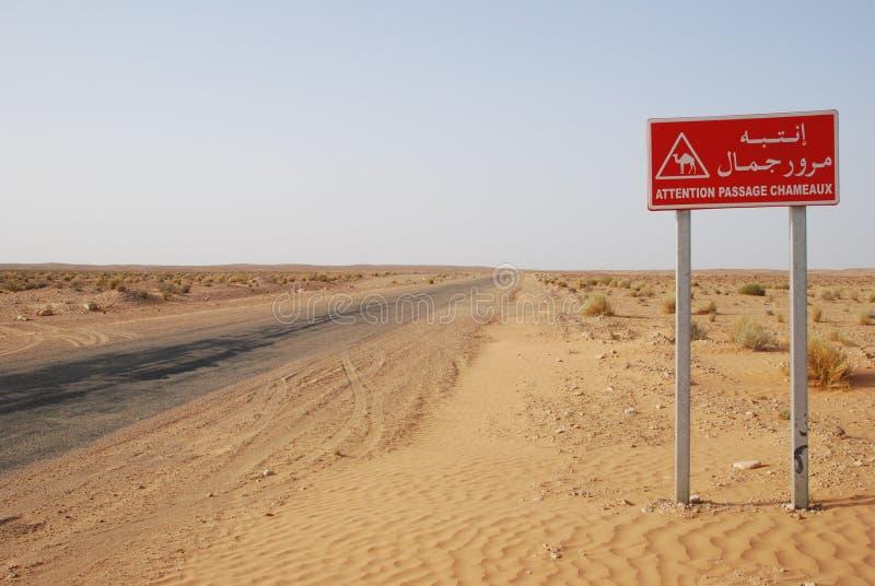 Kamelzeichen lizenzfreie stockfotografie