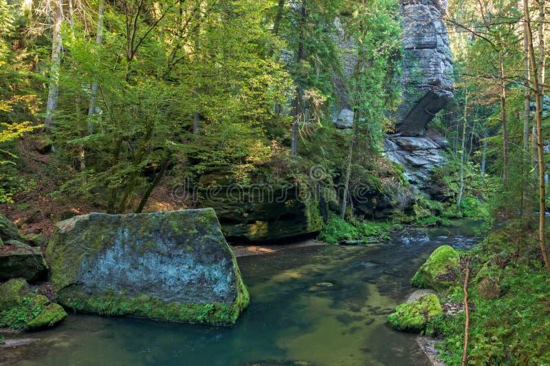 Kamenice river royalty free stock photography