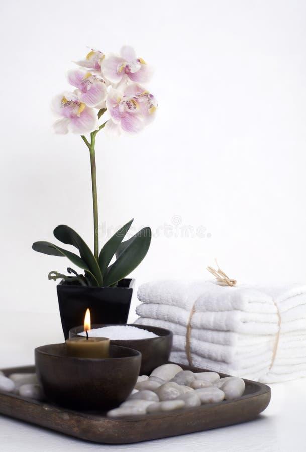 kameowy wellness w spa. zdjęcia royalty free