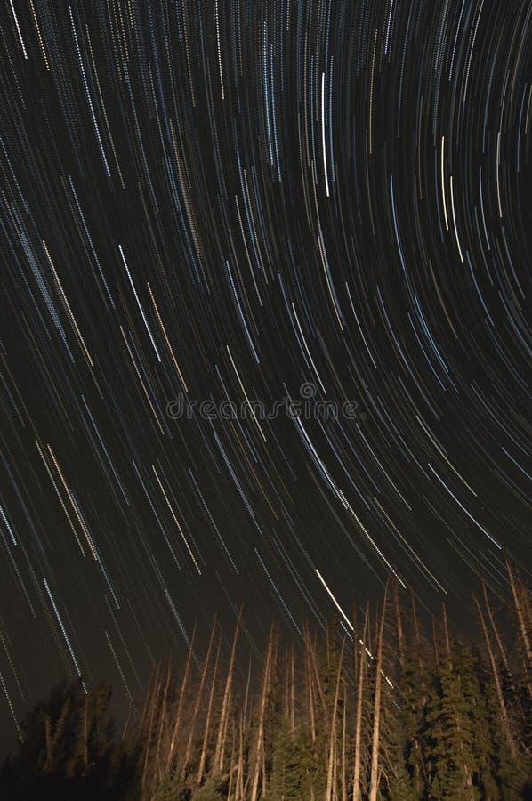 kamera spowodować ziemska narażenia nocy ruchu rotacji jest nieba gwiazda długo ciągnie zdjęcie stock