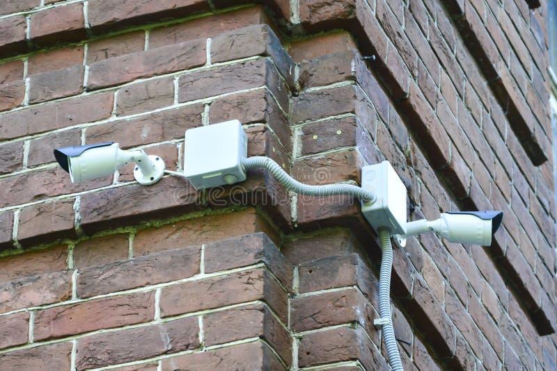 Kamery bezpieczeństwe wspinać się na ścianie z cegieł zdjęcie stock