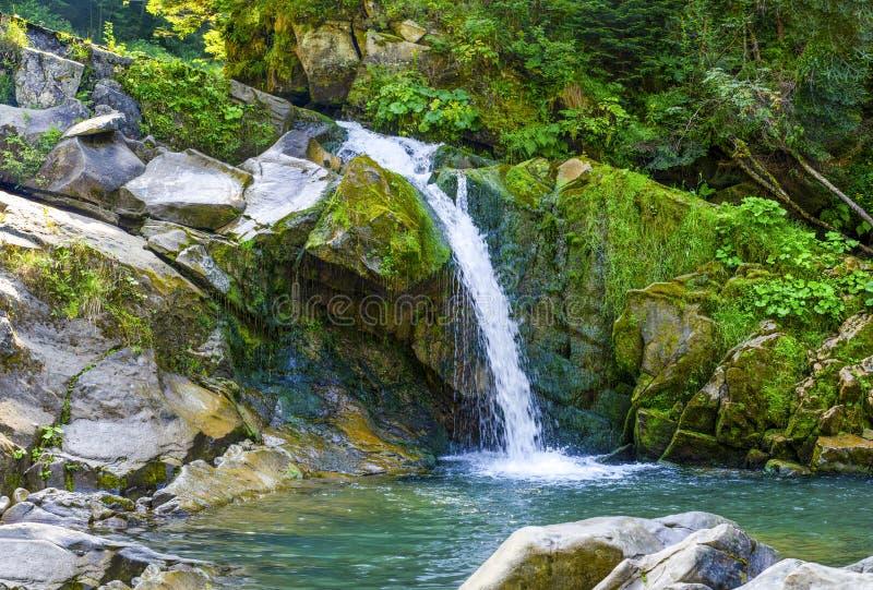 Kamianka em cascata nos Cárpatos fotografia de stock royalty free