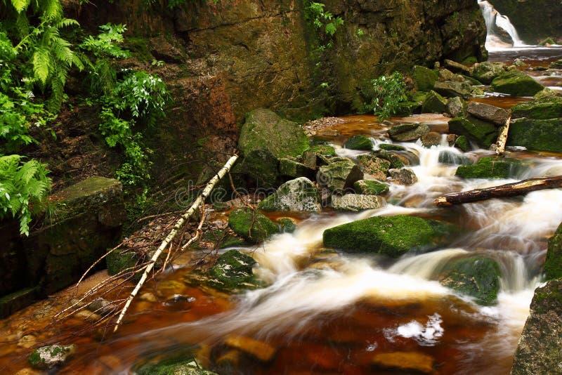 """KamieÅ """"czyk, woda, strumień, kamienie, odbicia, natura fotografia stock"""